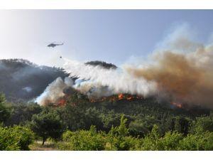 Bakan Eroğlu: 2014-2015'te ortalama 8 bin 863 hektar alan zarar gördü