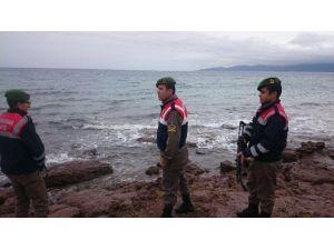 Çanakkale Sahillerinde 869 Kaçak Yakalandı