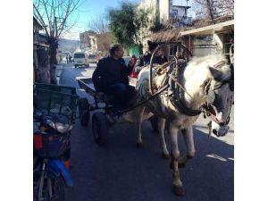 Kırmızı plakalıdan indi, at arabasına bindi