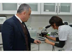 Başkan Böcek, Hayvan Barınağında İncelemelerde Bulundu