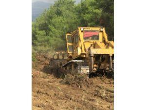 Uluçınar Köyü'nde Endüstriyel Plantasyon Çalışmaları