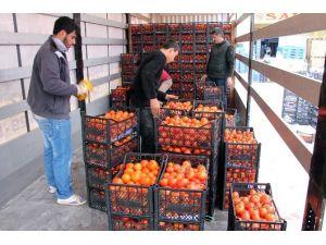 Kumluca'dan Bayırsucak Türkmenlerine Gıda Yardımı