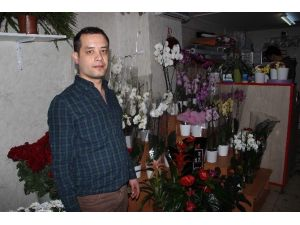 Soğuk Havalarda Evdeki Çiçeklere Dikkat