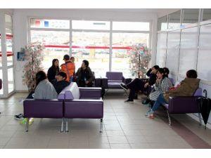 8 Koreli Turist Yedikleri Besinden Zehirlendi