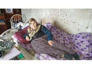 Karnındaki 10 Kilo Kitle İle Evde Ölümü Bekliyor