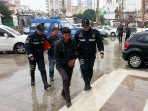 Hayvan Hırsızları Jandarma Tarafından Yakalandı
