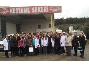 Gıda Bölümü Öğrencileri Kardelen'de