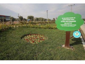 Manisa Büyükşehir Refüjleri Çiçeklerle Süsledi