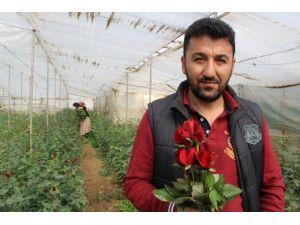 Çiçek Üreticisi Eşten 42 Yıl Sonra İlk Gül