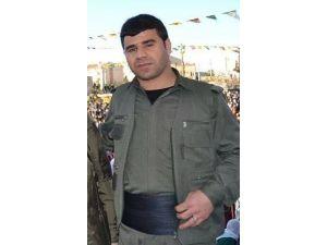 HDP'li Başkana Terörden Tutuklama
