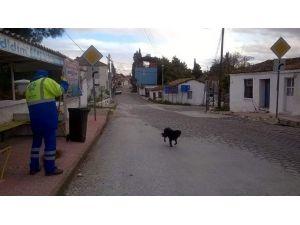 Büyükşehir Mahalleye Dönüşen Köylerde Hizmetlerini Sürdüyor
