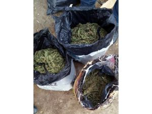 Salihli-kiraz Arası Uyuşturucu Operasyonu