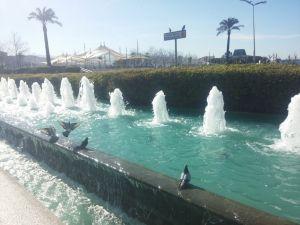 İzmir'de şubatta sıcaklık rekor kırıldı, çocuklar denize girdi