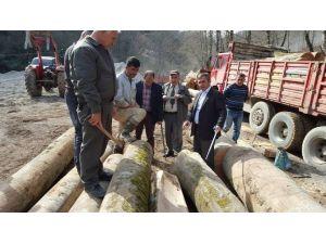 Orman İşletme Şefi Üretim Sahalarını Kontrol Etti