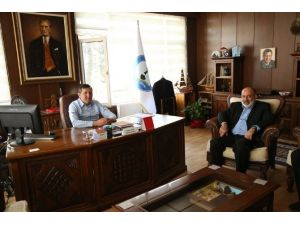 Abana'da, Türkiye Sujeti Şampiyonası Yapılacak