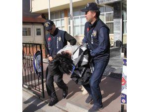 Polislere Saldıran Travestiler Gözaltına Alındı