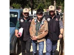 Polise molotof atarken yakalandı, mahkeme serbest bıraktı