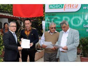 Dalamanlı Çiftçilere ''İyi Tarım'' Sertifikası
