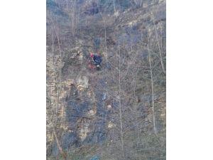 Kayalıklarda Mahsur Kalan Köpek Kurtarıldı