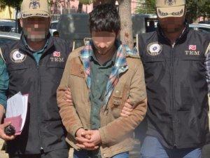 Polise el yapımı bomba attı mahkeme serbest bıraktı