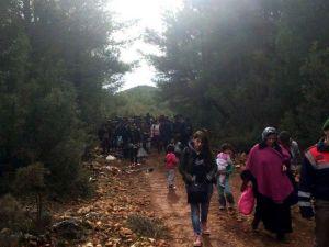 Antalya'da 104 Sığınmacı Yakalandı