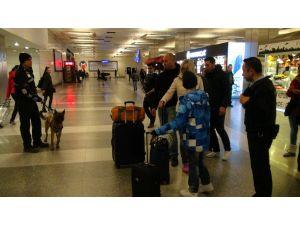 Bomba dedektörü köpekler havalimanında iş başında