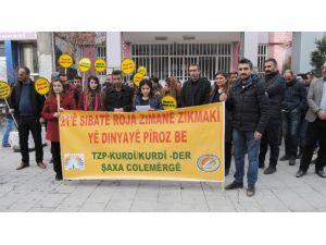 Hakkari'de 'Dünya Ana Dili Günü' kutlandı