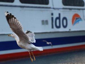 İDO, e-Dönüşümünü tamamlıyor, 1 Mart'ta e-Bilete geçiyor