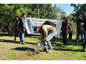 Cerattepe'deki ağaç katliamını protesto eden öğrenciler kampüse ağaç dikti