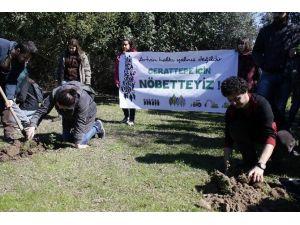 Öğrencilerden Cerattepe'ye Destek Eylemi