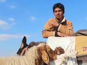 Anne babasının hayali için çobanlık yapıyor
