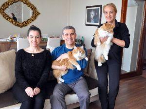 CHP'li Başkanın Vazgeçilmezleri: Ailesi, Partisi Ve Kedileri