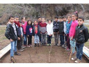 Beytüşşebap'taki 'Survivor' Köyünden Ilıcalı'ya Teşekkür