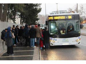 Eyyübiye Kampüsü Hattına 2 Yeni Otobüs Alındı