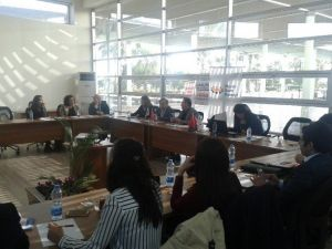 Mersin Kent Konseyi, Çogem'in Yeniden Açılmasını İstedi