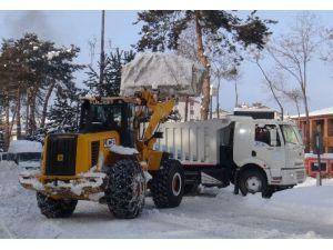 Tatvan'da Karlar Kamyonlarla Şehir Dışına Taşınıyor