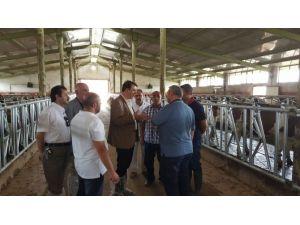 Erzurum Çiftçisine Yeni Destek