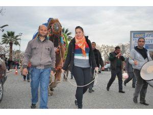 Salihli'de Develer Davul-zurna Eşliğinde Yürüdü