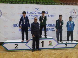 Vanlı Karateciler Türkiye Finalinde