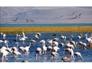 Doğa Turizmine 2 Milyon 650 Bin TL