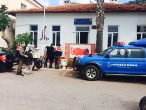 Marmaris'te göçmen kaçakçılığına 5 gözaltı