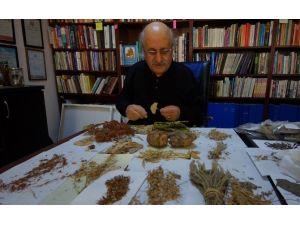 ARÜ'lü Akademisyen Ardahan'ın Şifalı Bitkilerini Anlatacak