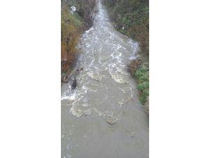 Kaynarca'daki Araman Deresi'nin ani kirliliği endişelendirdi