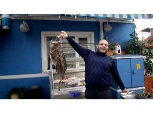 Mudanya'da 8 Kiloluk Fener Balığı Çıktı