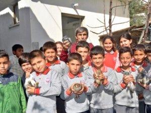 Çocukları Camiye Çekmek İsteyen İmam Hayvan Hediye Ediyor