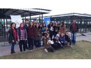 Karahisar Gençlik Merkezi'nden Hayvan Barınağına Ziyaret