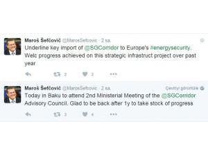 """""""Güney Gaz Koridoru Avrupa'nın enerji güvenliğinde önemli rol oynuyor"""""""