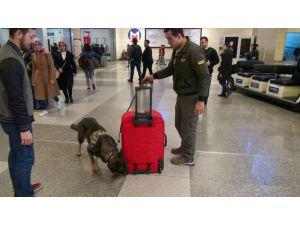 Atatürk Havalimanı'nda güvenlik incelemesi
