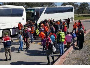Kübalı Mülteciler