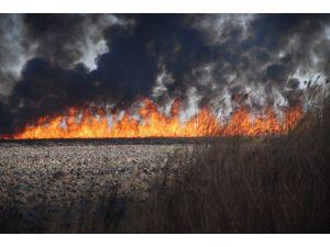 Silifke Göksu Deltası Kuş Cenneti'nde Yangın